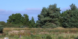 The Duneland site in Findhorn